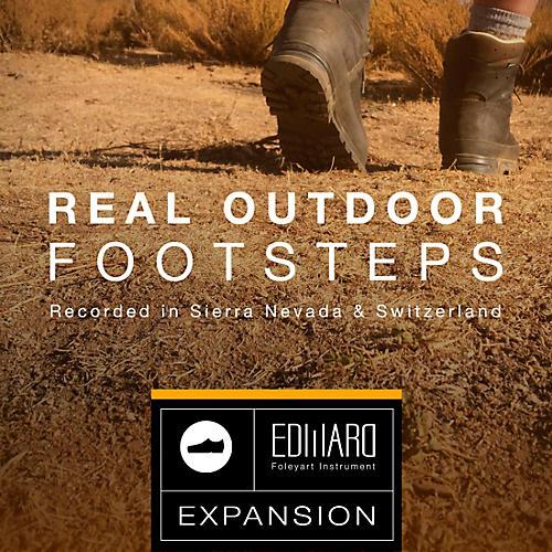 Best Service Real Outdoor Footsteps: EFI Expansion
