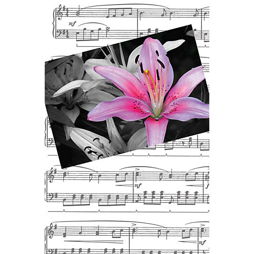 SCHAUM Recital Program #80 - Red & Blue Clefs Educational Piano Series Softcover