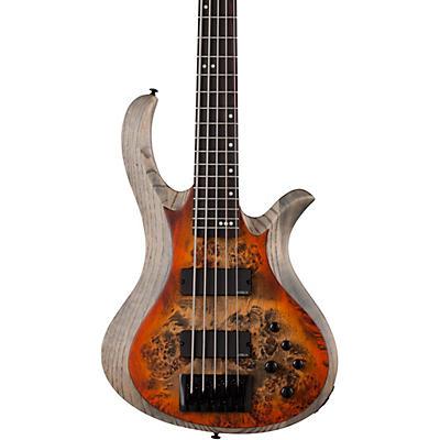 Schecter Guitar Research Riot-5 5-String Bass