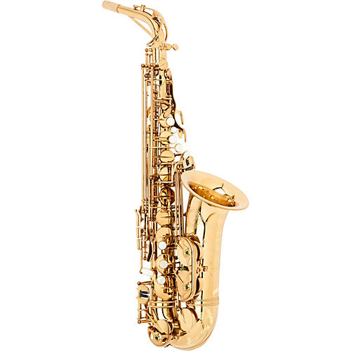 Theo Wanne SHAKTI Professional Alto Saxophone Condition 2 - Blemished Dark Gold Lacquer 190839906670