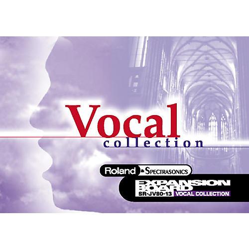 Roland SR-JV80-13 Vocal Expansion Board