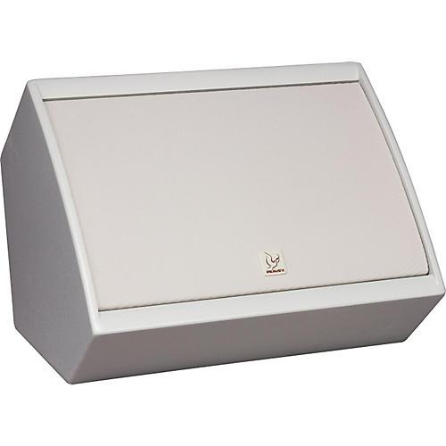 Peavey SSE 10M Sanctuary Series Monitor Speaker