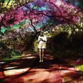 Alliance Sally Seltmann - Hey Daydreamer thumbnail