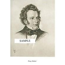 Music Sales Schubert (Lupas Large Portrait Poster) Music Sales America Series