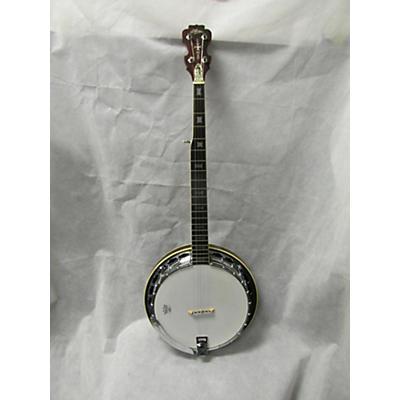 Aria Seahorse Deluxe Banjo