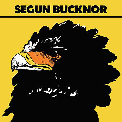 Alliance Segun Bucknor - Segun Bucknor
