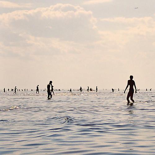 Alliance Selffish - He She Them Us