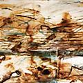 Alliance Solstafir - i Blooi Og Anda [In Blood and Spirit - 2002] thumbnail