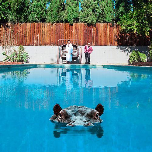 Alliance Sparks - Hippopotamus