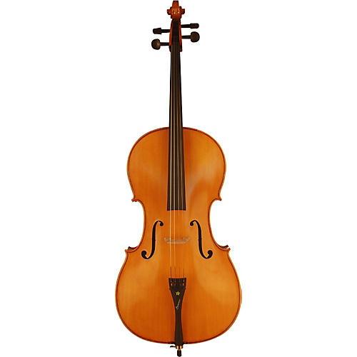 Bazzini Special Cello Outfit