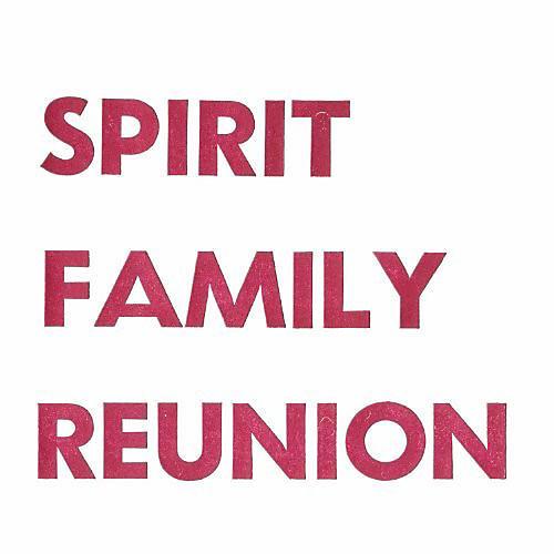 Alliance Spirit Family Reunion - No Separation