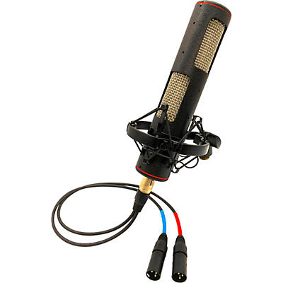 Stager Microphones Stereo SR-2N Ribbon Microphone (Matched Pair)