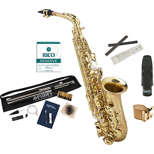 Allora Student Series Alto Saxophone Model AAAS-301 with Upgraded Accessories