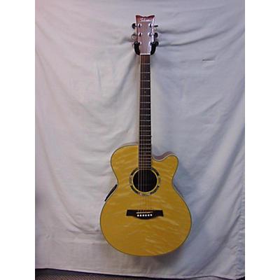 Schecter Guitar Research Sw3500 Acoustic Guitar