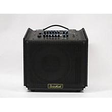 JazzKat Amps TOMKAT Guitar Combo Amp