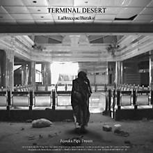Terminal Desert