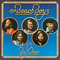 Alliance The Beach Boys - 15 Big Ones (LP) thumbnail