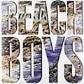 Alliance The Beach Boys - Beach Boys the (LP) thumbnail