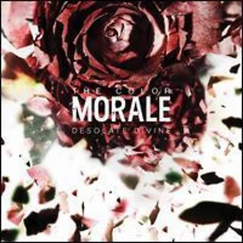 Alliance The Color Morale - Desolate Divine