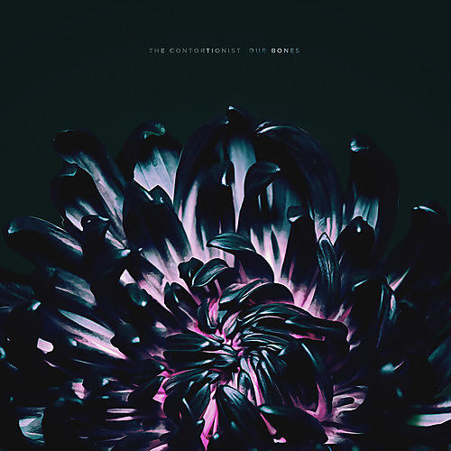 Alliance The Contortionist - Our Bones