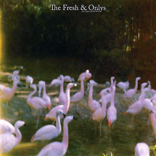Alliance The Fresh & Onlys - August in My Mind