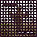 Alliance The Waterboys - Puck's Blues thumbnail