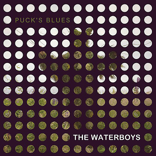 Alliance The Waterboys - Puck's Blues
