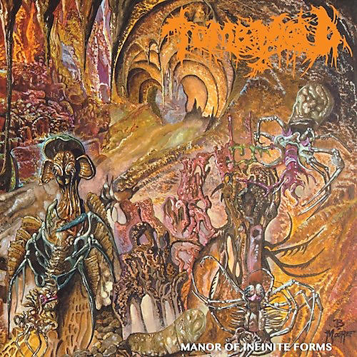 Alliance Tomb Mold - Manor Of Infinite Forms
