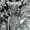 Alliance Tomb Mold - Primordial Malignity thumbnail
