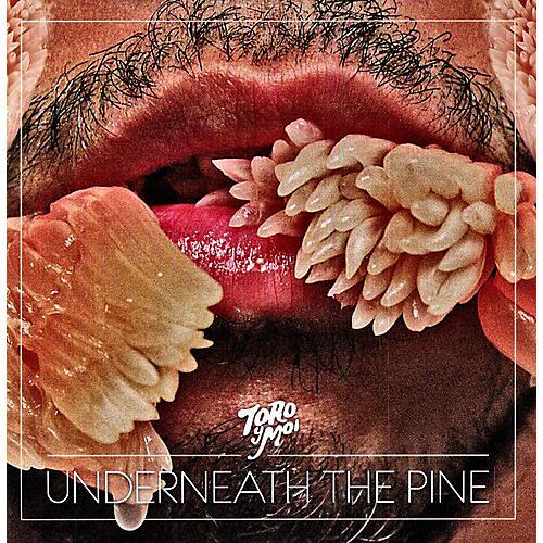 Alliance Toro y Moi - Underneath the Pine