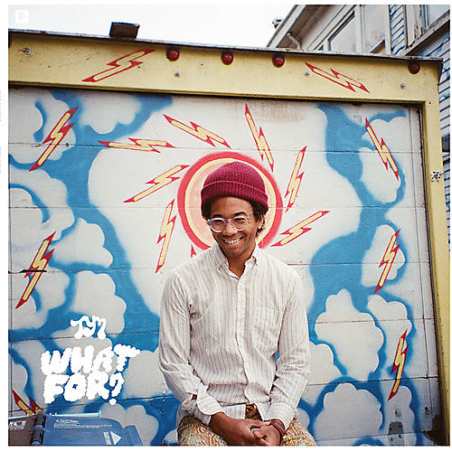 Alliance Toro y Moi - What for