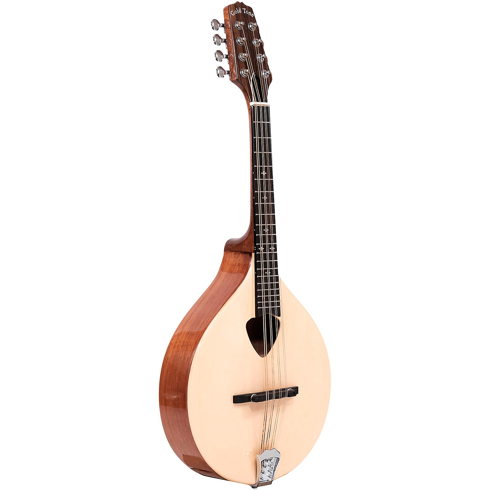 Gold Tone Traditional Irish Mandola with Case