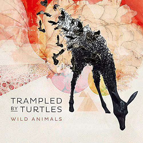 Alliance Trampled by Turtles - Wild Animals