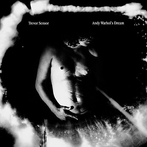 Alliance Trevor Sensor - Andy Warhol's Dream