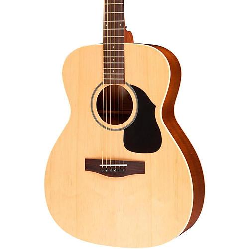 VAOM-04 Guitar Case