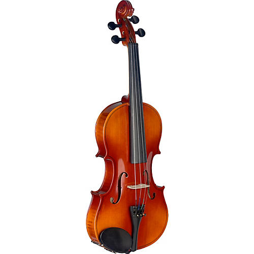 Stagg VN-L Series Student Violin Outfit 4/4