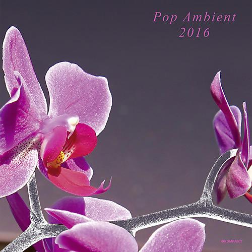 Alliance Various Artists - Pop Ambient 2016