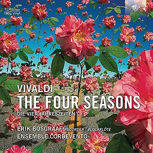 Alliance Vivaldi: 4 Seasons