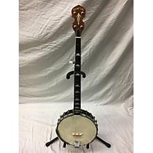 Gold Tone WI-250 OPEN BACK Banjo