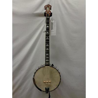 Gold Tone WL-250 Banjo