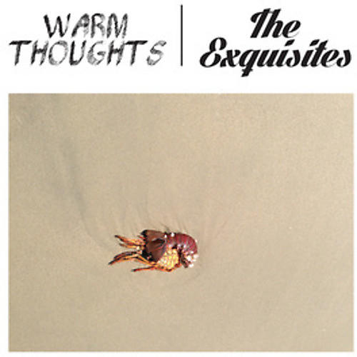 Alliance Warm Thoughts - Split