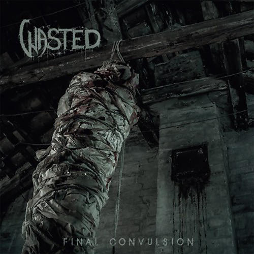 Alliance Wasted - Final Convulsion