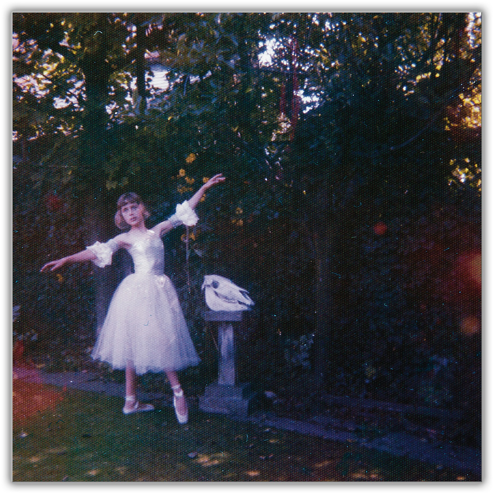 Sony Wolf Alice - Visions Of A Life