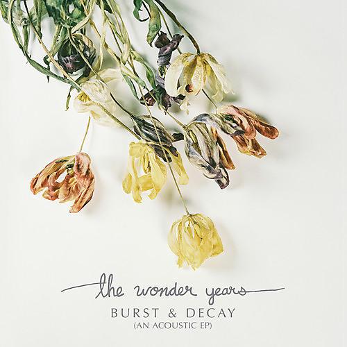 Alliance Wonder Years - Burst & Decay