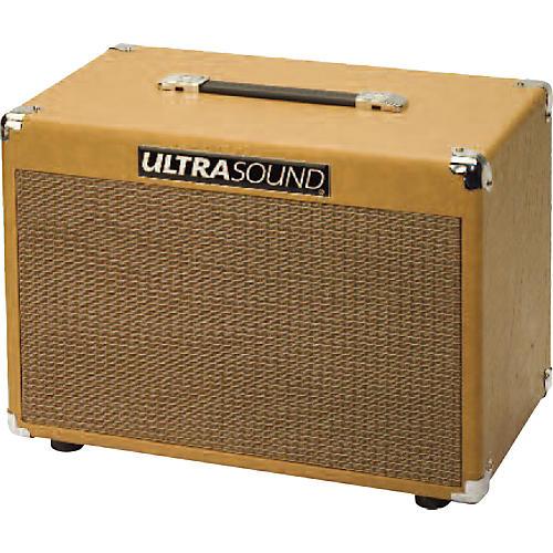 ultrasound xtc 50w 2x8 acoustic guitar speaker cabinet musician 39 s friend. Black Bedroom Furniture Sets. Home Design Ideas