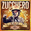 Alliance Zucchero - Black Cat Live From Arena Di Verona thumbnail