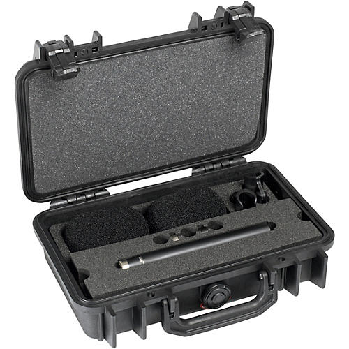 DPA Microphones d:dicate ST4006A Stereo Pair with Two 4006A with Clips and Windscreen in Peli Case